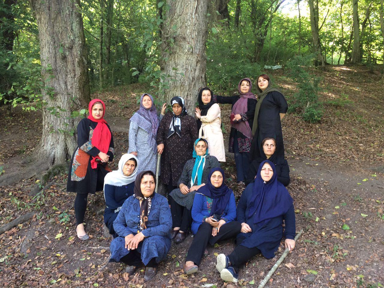 اردوی طبیعت درمانی در مازندران  منطقه جنگلی چورت کیاسر