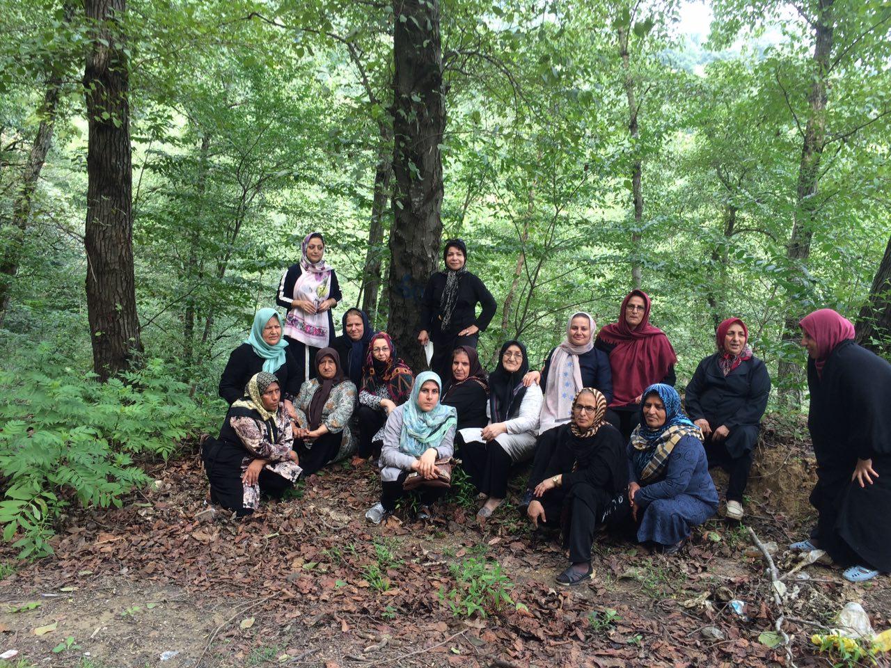 سفر طبیعت درمانی منطقه جنگلی لفور شاهکلا
