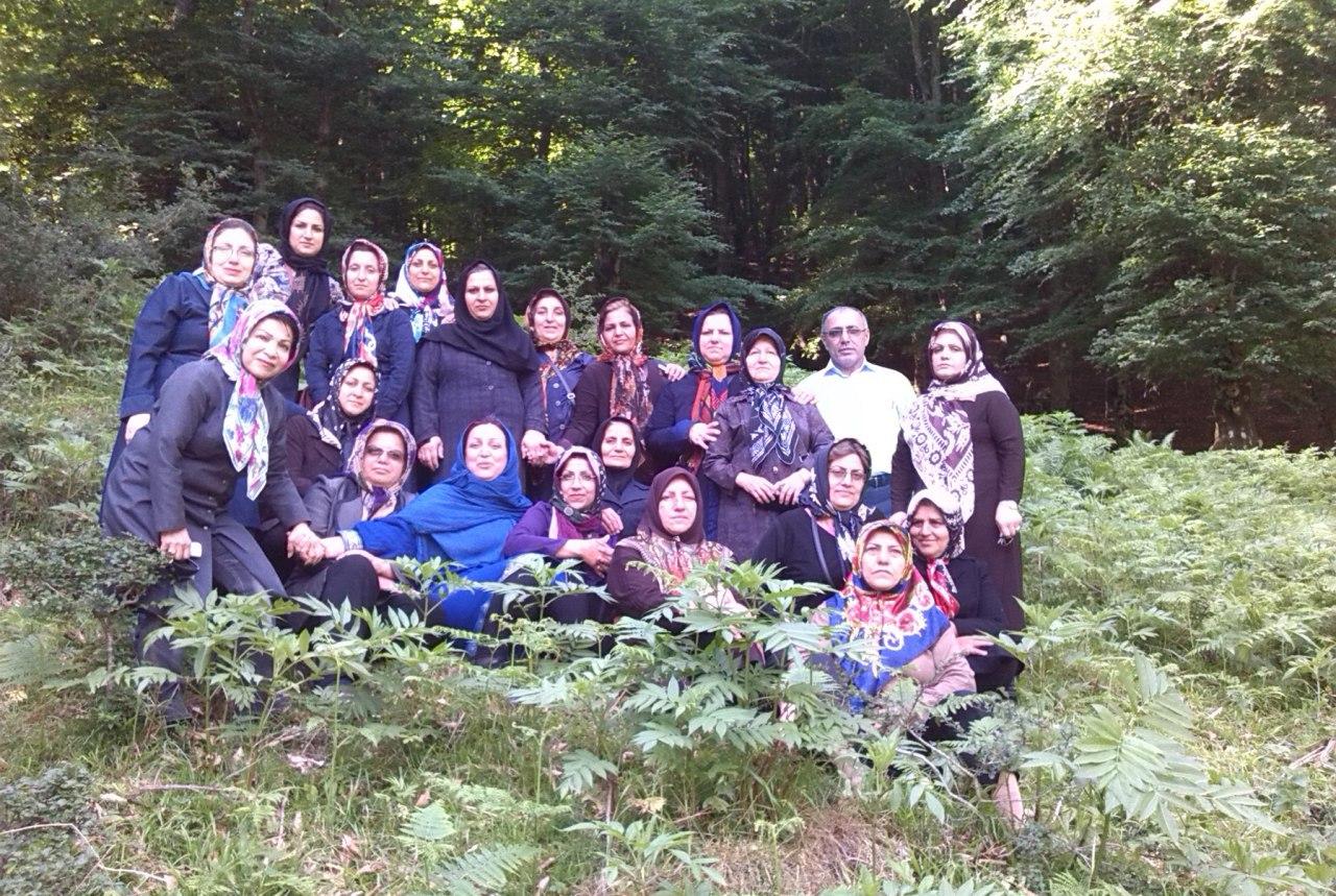 اردوی طبیعت درمانی در  مازندران منطقه جنگلی پل سفید